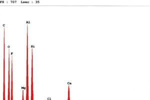 Bild6: Spektrum einer Probe der Lackierung aus einem geschädigten Bereich mit Ablaufspuren