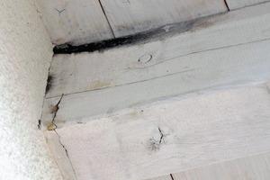 Bild 1: Schadensbild im Bereich der Seitenfläche eines Sparrens beim Übergang zur Untersicht der Dachschalung