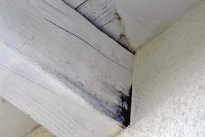 Bild 2: Schadensbild im unteren Bereich der Seitenfläche eines Sparrens