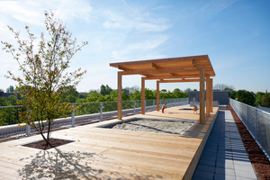 Die Dachterrasse ist für alle Bewohner da mit einer Spielfläche für Kinder und Holzdecks mit Beeten, die sie selbst bepflanzen können