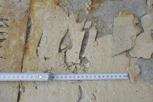 Bild 7: Fliesenkleber auf dem Zementestrich