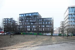"""Blick auf die Nordfassade aus dem Besselpark: Ein Baukörper, drei Teile. Rechts der<br />Neubau der """"taz"""""""
