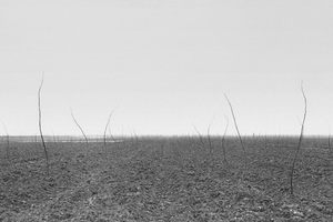 "Tomas Riehle: ""Landwaage"" 1979-80 15 x flaches Land - Polder, Flevoland, NL"