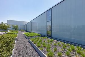 Attraktive Orte für Pausen oder informelles Arbeiten finden sich unter anderem auf der üppig bepflanzten Dachfläche.
