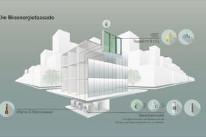 Die Bioenergiefassade nutzt das Sonnenlicht, um Wärme und Biomasse zu produzieren. In der Effizienz ist sie mit etablierten solaren Systemen vergleichbar.