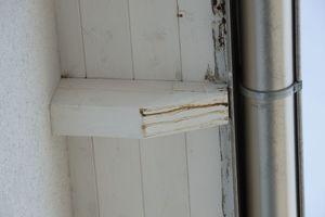 Bild2: Schadensbild bei einem Sparrenkopf und der Dachschalung