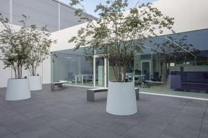 Blick in ein Büro mit Zugang zum Innenhof<br /><br />