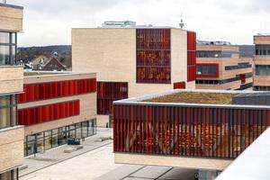 Bild 02 Insgesamt stehen auf dem 43000 m² großen Grundstück an der Duisburger Straße acht Gebäude zur Verfügung
