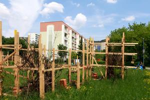 """Bauort A: """"Erschafft natürliche Infrastrukturen!"""" Erst verbotene Wiese, jetzt begehbares Naturwunder. Jurypreis"""