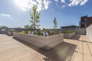 Der urbane Garten des Seminarpavillon als Modell für die Städte der Zukunft