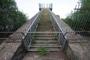 Sprengkraft: Pflanzen besiedeln ungestört die Treppenanlage