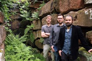 Die Gründer (v.l.): Martin Hamp, Björn Stichler und Dr. Tobias Graf haben die Fassadenbegrünung entwickelt