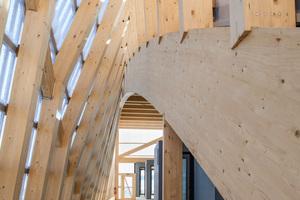 1m hohe Free-Form-Träger aus Brettschichtholz bilden die Grundstruktur für die gekrümmten Dach- und Fassadenflächen
