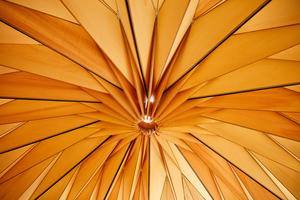 """Die Teilnehmer des Workshops """"Paramateria"""" bauten einen Origami-Pavillon"""