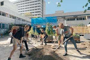 Gemeinschaftlicher Aufbau der Außenanlagen