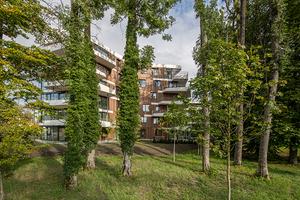 Der bauliche Entwurfsansatz der Gebäude im Park folgt dem Wunsch, ein vielfältiges Quartier zu schaffen