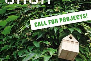 Das DAM ruft zur Einreichung von Projekten auf unter dem Titel #einfachgrün