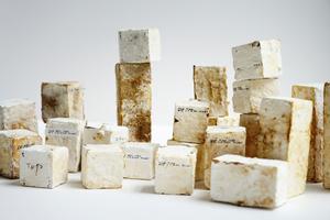 Myzeliumgebundene Baumaterialien könnten als biologischer Zementersatz dienen. Das<br />gewachsene Pilz-Myzelium kann als Bindemittel für biologisches Substrat verwendet werden, genauso wie Zement als Bindemittel für Sand und Kies eingesetzt wird