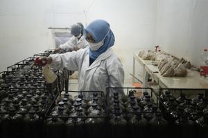 Das Wachstum des Myzel-Netzwerks und somit die Produktion von<br />Myzel-Biokompositen findet unter kontrollierten Bedingungen im Labor statt und ist dadurch unabhängig vom Klima eines Landes und der Verfügbarkeit von fruchtbarem Boden