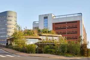 Das Maggie's Center sollte auf dem letzten noch freien, grünen Fleck des Klinikcampus entstehen. Für das Architektenteam stand fest, dass das grüne Grundstück grün bleiben und zusätzlich ein erholsamer Ort werden sollte