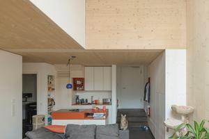 Maisonette über Erdgeschoss und erstem OG: Da die tragenden Holzbauwände den Bau in einem Abstand von 7,20m großzügig gliedern, blieb dazwischen viel Platz für die individuelle Gestaltung des Wohnraums