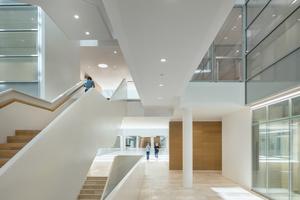 Der offene Treppenraum verbindet die verschiedenen Ebenen und gibt Orientierung