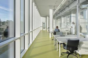 Auswerteplätze, Arbeitsplätze und Kommunikationszonen lagern sich an den Atrien, aber auch der Schaufassade zum Campusplatz an und geben so direkte Einblicke von außen in die Forschungslandschaft
