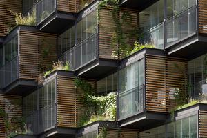 Durch die versetzten Körper entstehen dreieckige Beetflächen. Die Pflanzen wachsen an den Holzlamellen in die Höhe und ergänzen die Materialcollage aus Holz, Stahl und Glas.