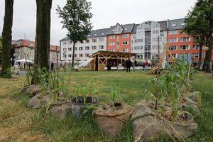 """Studierende der TU Braunschweig errichten einen temporären Pavillon auf dem Hagenmarkt. Dieser dient unter anderem als Veranstaltungsort. Das """"Reallabor Hagenmarkt"""" gehört zu den Gewinnerprojekten des Wettbewerbs """"DesignBuild Project"""" der Sto-Stiftung"""