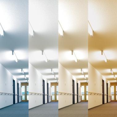 Mit Hilfe Verschiedener Leuchten, Die Ein Der Tageszeit Entsprechendes  Licht Abstrahlen, Wird Den Bewohnern
