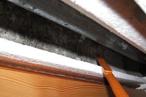 Bild5: Fenster1 – Schimmelpilze auf der Innenseite der Außenschale des Rollladenkastens