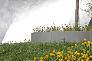 Grün auf engem Raum: in Frankfurt a. M. oder Aachen. Mal Blumenkübel, mal Rankfläche. Reicht das?