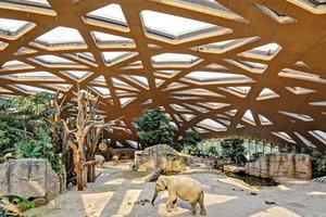 Das Dach ist als flache ,freitragende Holzschale konzipiert