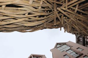 """Joko Avianto, """"Big Trees"""", 2015"""". Materialkontraste"""
