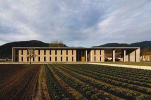 """Sieger Kategorie """"Büro und Gewerbebauten""""<br /><br />Projekt: Neubau Bauhof der Fa. Hansmann GmbH, Haslach<br />Baujahr: 2008<br />Architekt: harter + kanzler Freie Architekten BDA, Freiburg"""