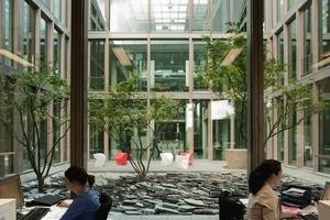 Die Innenhöfe sind bepflanzt. Sie wirken einer Aufheizung im Sommer entgegen und sorgen dafür, dass genug natürliches Licht in die angrenzenden Räume fällt<br />