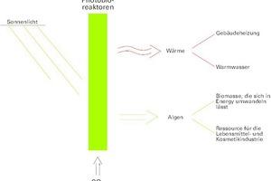 """<div class=""""13.6 Bildunterschrift"""">Angestoßen durch das Sonnenlicht, erzeugen die Photobioreaktoren Biomasse und Wärme</div>"""