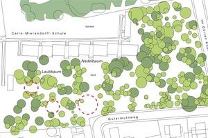 Um möglichst viele Bäume zu erhalten, um der Grundstückssituation mit dem Wald gerecht zu werden und dem Ganzen baulichen Ausdruck zu verleihen, wurden drei kompakte Baukörper in Form von Baumhäusern geplant