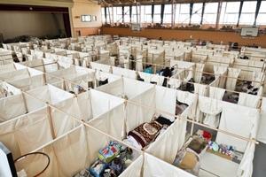Paper Partition System 4, 2011, Japan