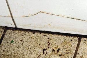 Bild7: Risse in Wandfliesen dicht oberhalb des Bodens<br />