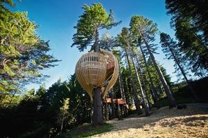 Das Treehouse befindet sich 10 m über dem Boden