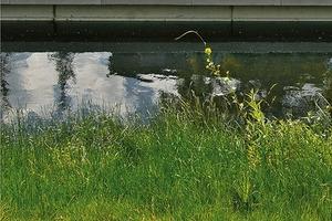 Sitzsteine – Weiches Ufer