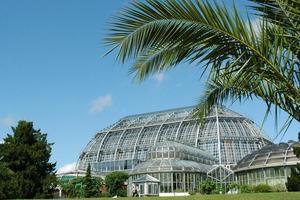 Das grundsanierte und denkmalgeschützte Große Tropenhaus im Botanischen Garten Berlin