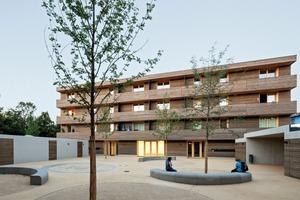 Tragwerk und Fassade bestehen fast vollständig aus Holz. Einzig die Bodenplatte sowie Sockel und Nebengebäude sind aus Stahlbeton