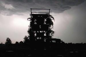 """Der """"Turm"""" bei Wald, ein Baumhaus aus Bäumen<br /><br />"""