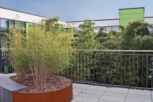 8m hoher Bambus wächst in dem Innenhof, der aus Kostengründen nicht überdacht wurde. Auf der Terrasse sind Sitzmöbel als Treffpunkte aufgestellt
