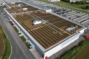 Abb. 2: Gründach und Solarenergie ergänzen sich in idealer Weise