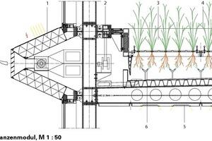 Pflanzenmodul, M 1:50<br />