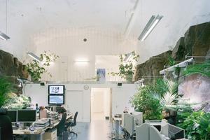 Die Arbeitsräume der Techniker sind hell ausgeleuchtet und üppig begrünt, so dass der fehlende Außenbezug nicht auffällt<br />