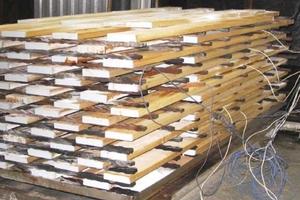 Biologisch und bautechnisch einwandtfreie Ertüchtigung heimischer Hölzer für den Fensterbau